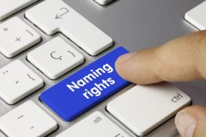 3 עובדות על זכויות דומיין שיפתיעו אותך