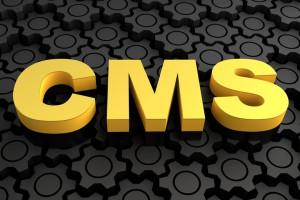 מערכות ניהול תוכן – הדרך שלך להצלחה הבטוחה